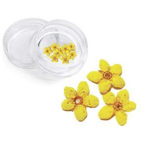 Severina, Сухоцвет для дизайна ногтей F2, желтый