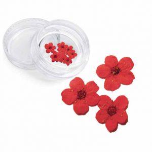 Severina, Сухоцвет для дизайна ногтей F4, красный