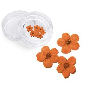Severina, Сухоцвет для дизайна ногтей F5, оранжевый